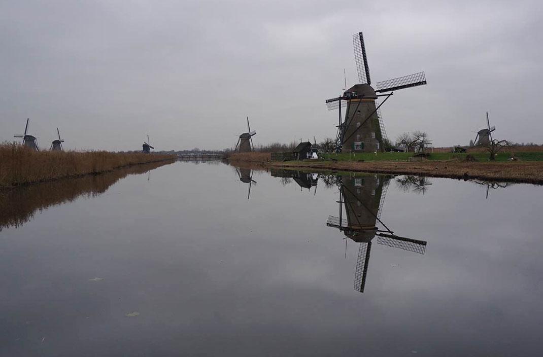 维京游轮荷兰小孩堤防