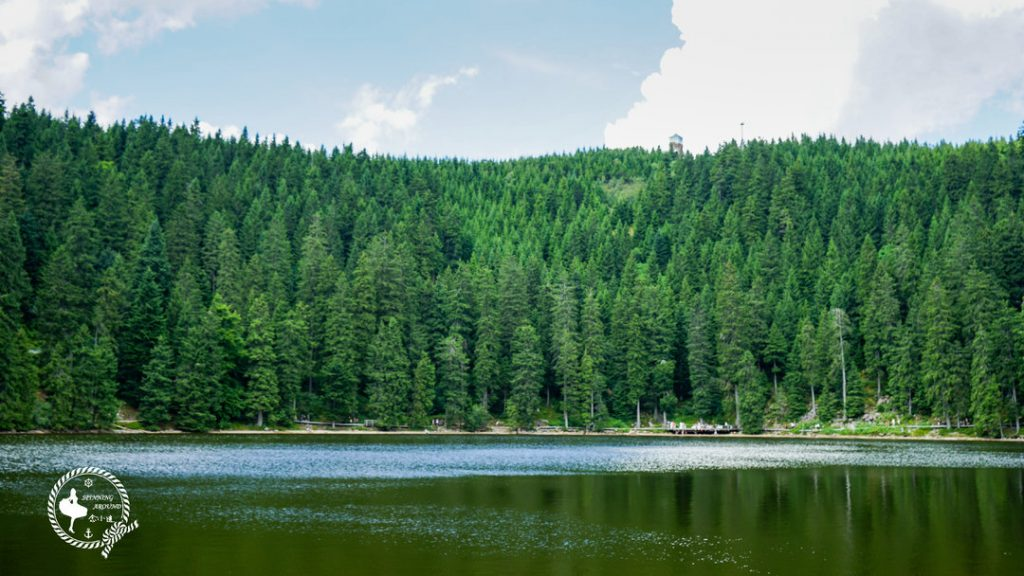 维京游轮游记巴登巴登黑森林